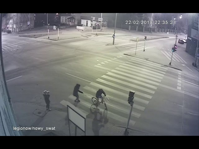 Kalisz. Rowerzystka potrąciła psa na przejściu