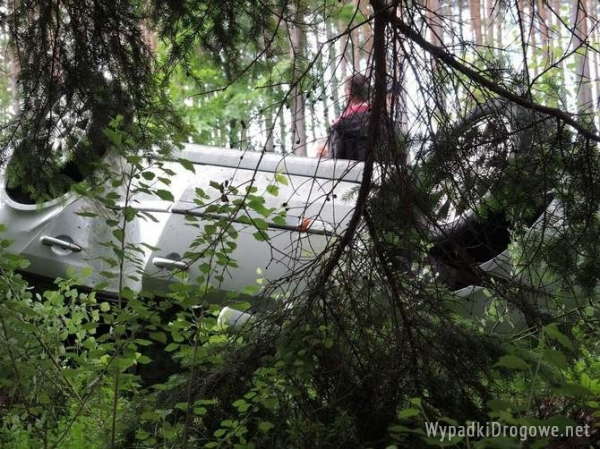 Wjechał w las i dachował